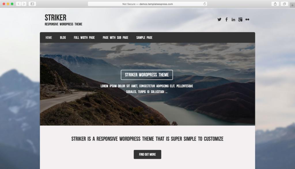 Striker WordPress teması